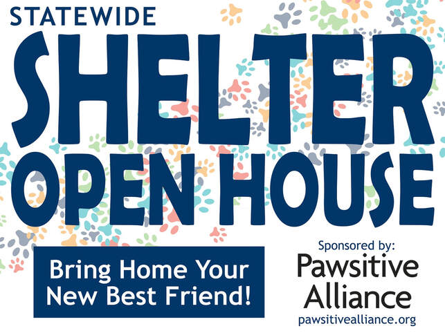pawsative alliance, shelter open house, 2020 shelter open house, avhs, auburn valley humane society