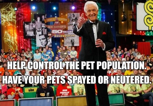 """Game Show Host Bob Barker stands with his back to the Price is Right studio audience, skinny mic in hand, smiling and pointing at the camera. The words """"Help Control the pet population, have your pets spayed or neutered"""" are written across the image."""