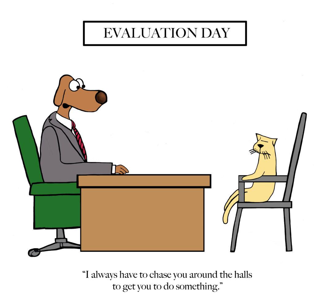 Dog boss has to chase cat around halls
