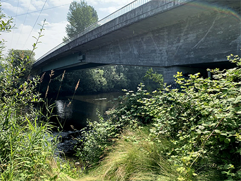 A concrete bridge stretches over vegetation and a tranquil river.