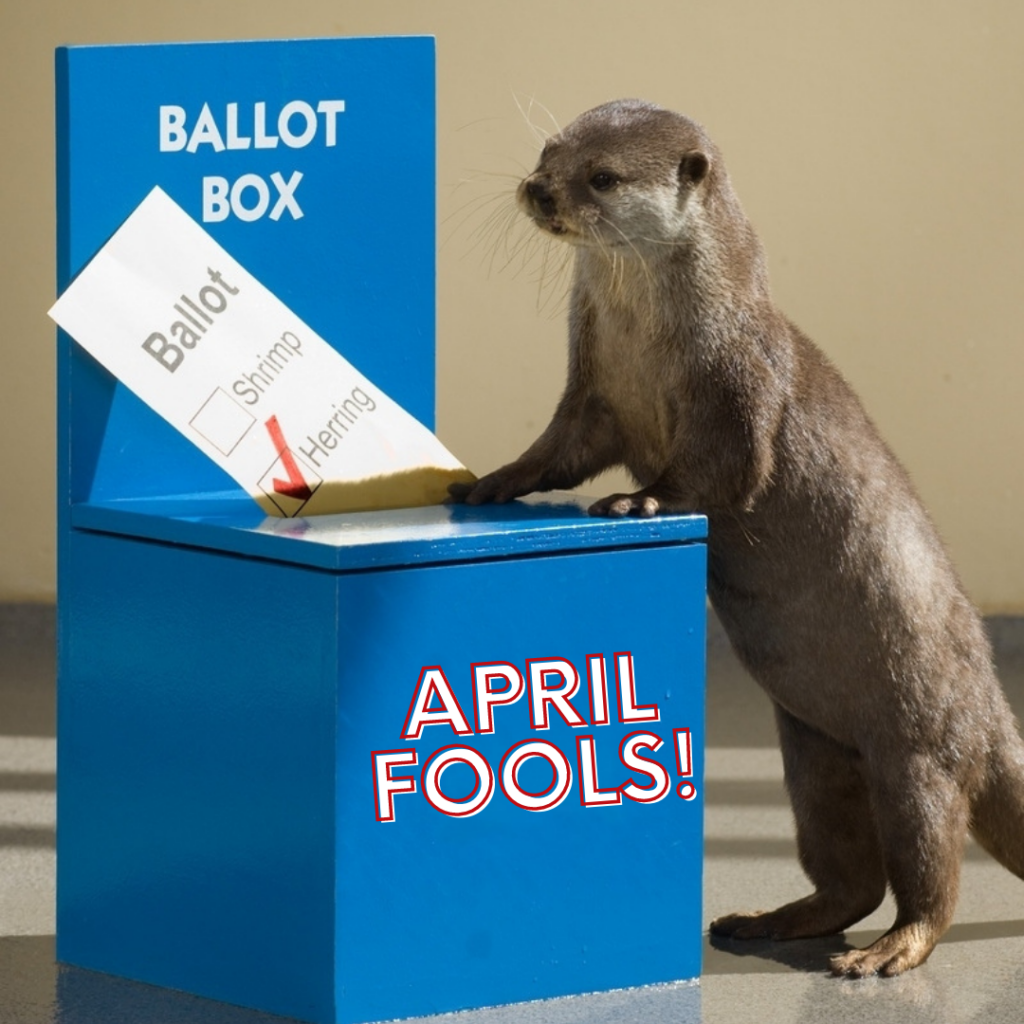 """an otter stands at a blue ballot box casting its vote for which fish is best. """"April Fools!"""" is written on the front of the ballot box."""