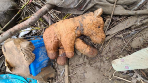 a stuffed animal lays in the mud surrounded by trash and debris