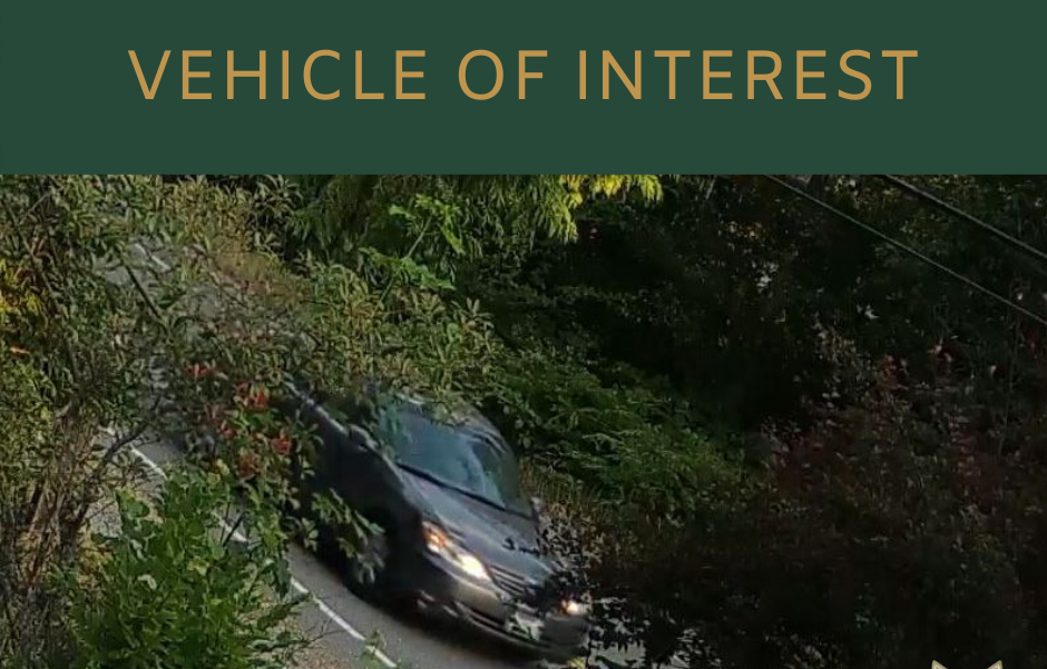 A still photo from camera footage of a gray sedan driving on the road. The car is seen through trees